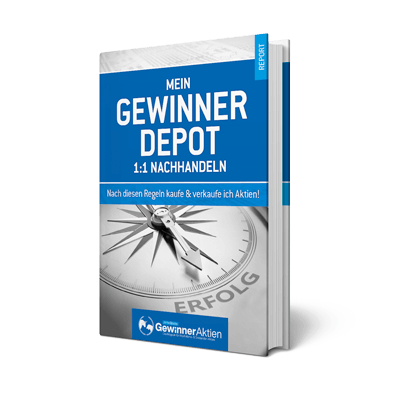 E-Book: Gewinner Depot